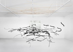 Ulrike Mohr, Anthrakothek, 2013, spatial drawing with a collection of wood into charcoal, wooden planks, nylon thread, 900 x 350 x 500 cm. Photo: Jens Ziehe, copyright the artist and VG BildKunst